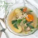 Not sure what to do with your turkey leftovers? Instant Pot Turkey Leftover Soup is just what you need! Don't let any of that bird go to waste. https://www.theprimaldesire.com/instant-pot-turkey-leftover-soup/